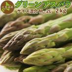 グリーンアスパラ 2kg(混合M〜2Lサイズ)北海道 千歳産 ご予約販売 5月〜6月発送 送料無料 アスパラガス クール便