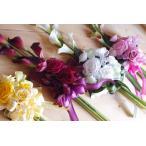 お祝い花束 カラー花束  贈答花 プリザーブドフワラー&アーティーフィシャル
