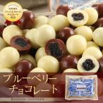 ホワイトデー ギフト 食べ物 お菓子 詰め合わせ 洋菓子/ブルーベリーチョコレート130g/袋 サロンドロワイヤル