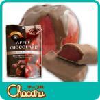 人気のアップルチョコの食べきりサイズ。個包装されています。