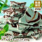 割れチョコ クールなチョコミント 250g チョコミント 訳あり 数量限定