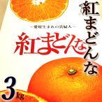 ★「紅まどんな」 約3キロ 愛媛産 秀品 ハウス栽培★「プリプリ食感」がたまらない新感覚柑橘