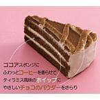 ★ ティラミスカフェ 6個入 約55グラム / 個 業務店・プロ御用達 ★ 冷凍ケーキ(HMY)