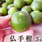 chokuhan_f060814n057s4