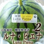 高級すいか「ルナ・ピエナ」 高知県夜須町産 約2キロ 糖度検査済 南国土佐の高級すいか