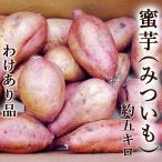さつまいも わけあり 蜜芋 みついも 安納芋品種 約5キロ M〜Lサイズ 高知産 焼芋専用 高糖度 甘い ネットリ サツマイモ 安納芋 ミエルスイート 焼き芋 やきいも