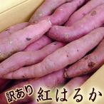 さつまいも わけあり 紅はるか べにはるか 約5キロ M〜Lサイズ 高知産 新種の蜜芋 焼芋専用 高糖度 甘い ネットリ サツマイモ ベニハルカ 焼き芋 やきいも