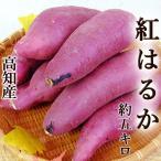 さつまいも 紅はるか べにはるか 約5キロ M〜Lサイズ 高知産 新種の蜜芋 焼芋専用 高糖度 甘い ネットリ サツマイモ ベニハルカ 焼き芋 やきいも スマステ