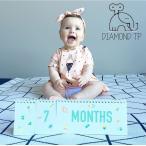 ベビー月齢カード/マンスリーカード/赤ちゃんの月齢記念日写真撮影用カード/ベビーフォト/マンスリーフォト成長記録/出産祝い/ギフト/100day記念/お祝い