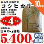 お米 10kg コシヒカリ 富山県南砺市 サカタニ農産 白米10kg 平成28年産 送料無料