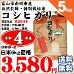 お米 5kg コシヒカリ(特別栽培米) 富山県南砺市 サカタニ農産 白米5kg 平成28年産 送料無料