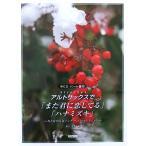 アルトサックスで また君に恋してる ハナミズキ CD・パート譜付 野呂芳文 編 ドレミ楽譜出版社