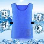 熱中症対策グッズ 冷却冷感ベスト ひんやりシャツ クールベスト 合成セーム 夏フェス 軽量 真夏 作業着 工事現場 炎天下作業に最適 男女兼用