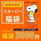 スヌーピー レビューを書いて おまけ ウッドストック フレンズ ほか 6000円相当 キャラクター 福袋 キャラクターグッズ ピーナッツ 雑貨 ギフト