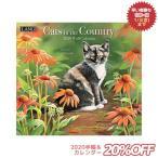 猫 カレンダー 2020年 ラング LANG CATS IN THE COUNTRY Susan Bourdet