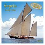 カレンダー 2021年 壁掛け 海外 輸入版 セイリング 帆船 Sailing artwork STUDIOS 写真 海風景