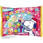 スヌーピー ピーナッツ キャラクター クリスマスお菓子 チョコ&クッキー バラエティパック ハート