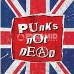 PUNKS NOT DEAD FLAG ステッカー PRST-053