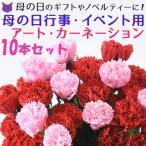 カーネーション 母の日 花 アート フラワー 切り花 花材 赤 レッド ピンク 10本 セット 花束 ギフト 一輪挿し 観賞用