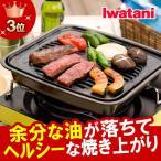 鉄鋳物製 焼肉グリル イワタニ iwatani カセットフー専用アクセサリー カセットコンロ用焼肉グリルM CB-P-GM 焼き肉プレート