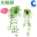 光触媒 観葉植物 おしゃれ 壁掛け アイビー 人工観葉植物 ハンギング 吊り下げ 光触媒Green (送料無料)