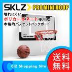 バスケットゴール スキルズ プロミニフープ ドア掛けタイプ PMH01