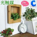 光触媒 観葉植物 おしゃれ 壁掛け 人工観葉植物 ラベンダー ユーカリ グリーンウッドフレーム 光触媒Green RG (送料無料)