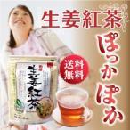 生姜紅茶 国産 ジンジャーティー ティーパック 20ヶ入 熊本産生姜 有機セイロン茶