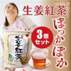 ショッピング紅茶 生姜紅茶 国産 ティーパック 20ヶ入×3袋 熊本産 生姜 有機セイロン茶