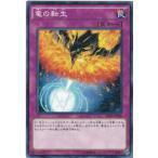 遊戯王 SR02-JP036 竜の転生 ノーマル