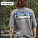 新品 パタゴニア Patagonia 21FW M's P-6 Mission Organic Tee P-6ミッション オーガニック Tシャツ 37529 2021FW 21FA 200008853046 半袖Tシャツ