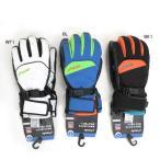 【寒さを防ぐ!指先まで暖かい!】PHENIX フェニックススキーグローブ Fusion Gloves PS478GL32【グローブ】