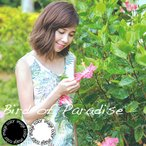 """ワンピース レディース """"Bird of Paradise""""    リゾートウエディング 沖縄結婚式にアロハシャツ"""