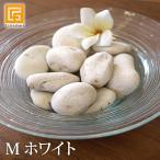 ナチュラルストーン(M)ホワイト   化粧石 飾り石 観葉植物 マルチング 装飾用 白い石  小石 インテリア トイレタンク 飾り 土隠し  メール便対応可