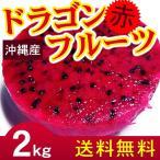 沖縄産 ドラゴンフルーツ 赤 レッド 2kg(4〜8玉) 自宅用