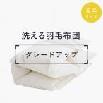 グレードアップチケット 洗える羽毛布団 ミニサイズ【日本製】【全品送料無料】