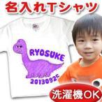 名入れ Tシャツ 名前入り  出産祝い 誕生日 ギフト プレゼント ベビー&キッズ 動物デザイン ブラキオサウルス メール便対応