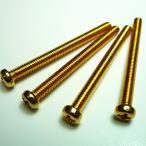 ハムバッカーピックアップ用ビス 2.5mm 4個セット ゴールド