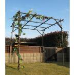 第一ビニール ガーデンアグリパイプ果樹棚セット