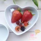 アウトレット 訳あり 白い食器のハートタルトディッシュ 洋食器/食器 /訳あり/陶器/ オープン記念