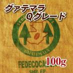 ショッピングコーヒー グァテマラ アンティグア ラ・コムニダ農園 100g 焙煎コーヒー豆 送料無料 ゆうパケット発送※日時指定できません