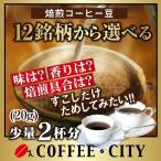 お試し ポイント消化 コーヒー豆  20g 超少量選べる銘柄12種類 送料無料 定形郵便発送/日時指定できません