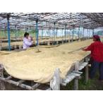 ペルーヤネッシャ 1kg レインフォレストアライアンス認証コーヒー豆
