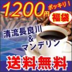コーヒー豆 福袋 お試し 至極のブレンド限定セット 清流長良川150g.マンデリン150gメール便