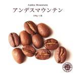 アンデスマウンテン エクアドル コーヒー 200g × 1袋 | コーヒー豆 珈琲 自家焙煎 こだわり 生豆 粉 マイルド 焙煎 挽き立て 本格  専門店 おためし