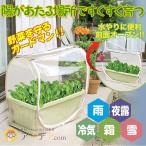 ショッピングプランター プランター カバー ガーデニング 雨よけ 虫よけ 家庭菜園 野菜すくすくプランターカバー コジット