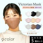 Victorian Mask Lサイズ | マスク 抗菌 小顔 ヴィクトリアンマスク 韓国 韓流 SNS 息がしやすい きれい リップ 立体 個包装 ヴィクトリアン ビクトリアン