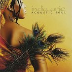 (CD)(͢����) Acoustic Soul/ ����ǥ���.��� �ʴ�����534030)