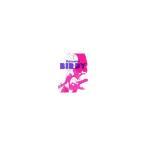 鉄腕バーディー DECODE 1 (完全生産限定版) (DVD) (2008) 千葉紗子; 入野自由; 赤根和樹 (管理:164123)