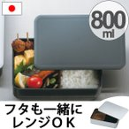 お弁当箱 日本製 メンズ一段ランチ 800ml メタリック 食洗機対応 電子レンジ対応 ( HAKOYA 弁当箱 ランチボックス )
